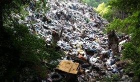 5. jun, Dan zaštite životne sredine, razglednica, Vasove Vode