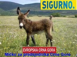 Magarac